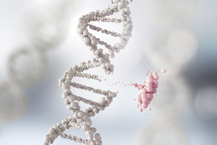 TEST DE PORTADORES Y TEST DE COMPATIBILIDAD GENETICA IFER MALLORCA