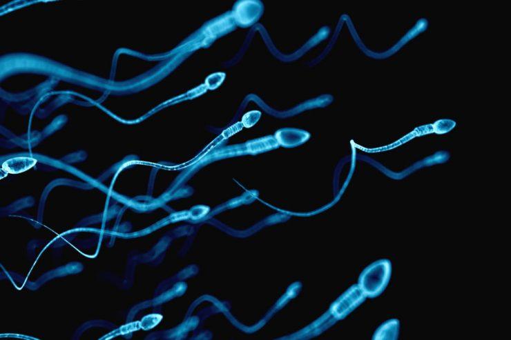 tratamientos-de-reproduccion-humana-asistida-contra-la-AZOOSPERMIA-instituto-de-fertilidad-mallorca