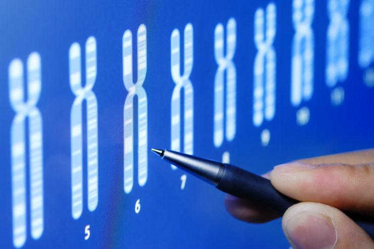 cariotipo-que-es-descubre-en-el-blog-de-infertilidad-de-instituto-de-fertilidad-mallorca-todo-sobre-esta-prueba
