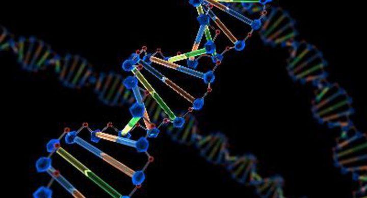 Infertilidad-masculina-con-azoospermia-o-oligozoospermia-por-una-unica-mutacion-genetica-instituto-de-fertilidad-mallorca